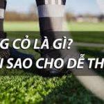 Cách để đánh bóng cỏ. Lợi nhận cao.