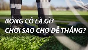 cách đánh bóng cỏ