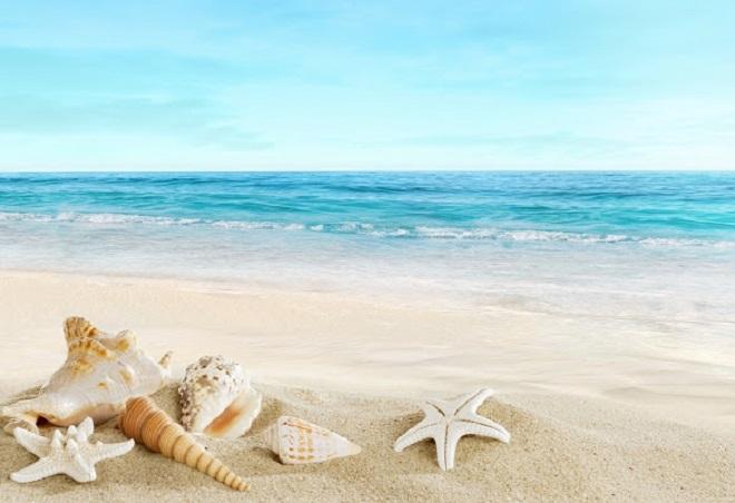 Mơ thấy biển